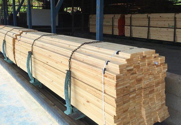 Importancia del secado de la madera tratada y hornos de secado para maderas en Costa Rica.